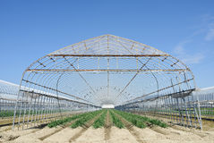 Agricultural building for farming Royalty Free Stock Photo