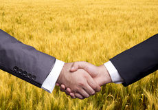 Agricultural Business Royalty Free Stock Image