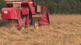 Agricultural combine harvester cut ripe wheat grain field stock video