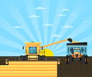Agricultural combine harvester in grain field. Rural agribusiness illustration with farmer working in field, growing and harvesting at farmland. Locally grown Stock Photography