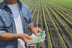 Agricultural concept, farmer, money and field. Farmer holding Euro banknote with green cultivated soy field in background Royalty Free Stock Images