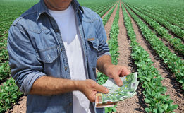 Agricultural concept, farmer, money and field Royalty Free Stock Photography