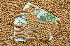 Agricultural concept, soybean and money Stock Photo