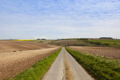 Agricultural country road Royalty Free Stock Photography
