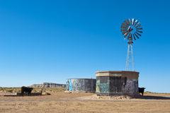 Agricultural desert farm in Arizona. Agricultural desert farm in Arizona with a cow in silhouette and a windmill high in a blue sky Royalty Free Stock Photos