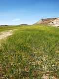 Agricultural desert landscape in a bright day. Spanish province Aragon is on a new era on agricultural solutions for is desert land Stock Image