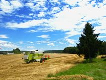 Agricultural economics Royalty Free Stock Photography
