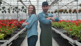 Agricultural Engineer Walks Through Industrial Greenhouse with Professional Farmer. They Examine State of Plants and stock video
