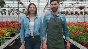 Agricultural Engineer Walks Through Industrial Greenhouse with Professional Farmer. They Examine State of Plants and stock video footage