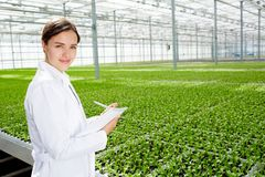 Agricultural engineer at work stock images