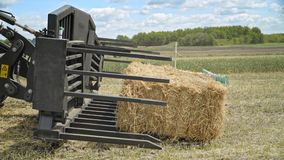 Agricultural excavator bucket. Harvesting hay. Farming machinery. Farming forklift loading bale hay. Agricultural machinery for loading straw on farming field stock footage