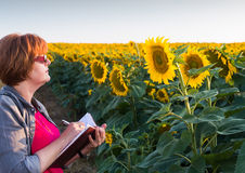 Agricultural expert Stock Image