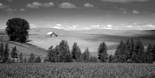 Agricultural farm landscape Stock Photos