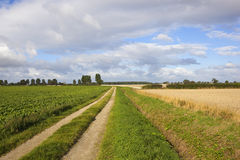 Agricultural farm track Royalty Free Stock Photo