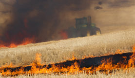 Agricultural Farmers Burn Plant Stalks Harvest Fire Tractor Royalty Free Stock Photo
