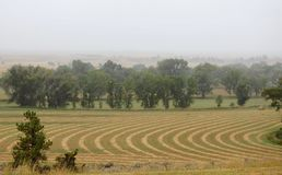 Agricultural Farmland in Montana with Plowed Crop Rows. Large fields of agricultural farmland on a foggy, overcast day in rural Montana.Crops are plowed in royalty free stock images