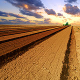 Agricultural field. At sunset with clouds Royalty Free Stock Images