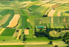 Agricultural field aerial view Stock Photography