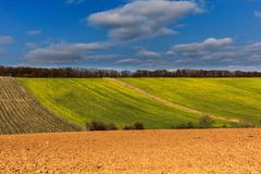 Agricultural field in autumn sunny weather stock image