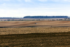 Agricultural field with cereal Stock Photo