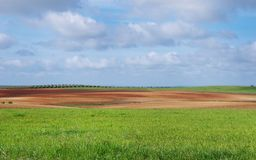 Agricultural field, cloudsky. Agricultural field and cloud sky Stock Images