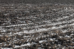 Agricultural field covered by snow. In winter Royalty Free Stock Image