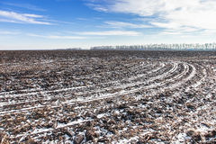 Agricultural field covered by snow. In winter Royalty Free Stock Photography