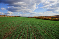 Agricultural field in Europe Stock Photo
