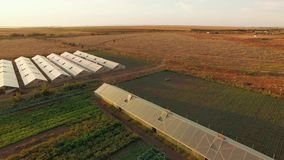 Agricultural Field With Greenhouses Plantations At Sunset stock footage