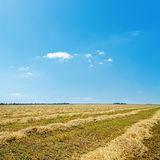 Agricultural field after harvesting and blue sky Royalty Free Stock Images