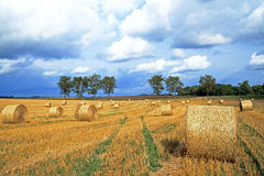 Agricultural Field Haystacks Stock Images