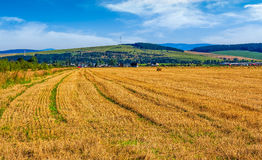 Agricultural field in mountains. Agricultural hay field in mountains. trees behind the grassy meadow. beautiful rural landscape Stock Photo