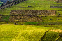 Agricultural field in mountains at sunrise. Green agricultural field with haystack on hillside in mountains in morning light Royalty Free Stock Image