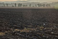 Plowed Filed at Dusk. Agricultural field in the north of Israel at sunset Stock Photos