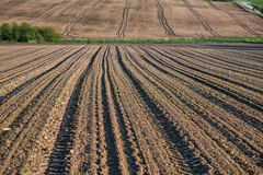 Agricultural field, plowed after harvest, the summer season, the. Plowed field with tractor traces in spring time, farm soil background Royalty Free Stock Photography