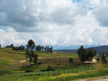 Agricultural field in Sacred Valley, Cusco Stock Image