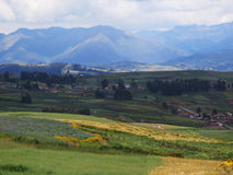 Agricultural field in Sacred Valley, Cusco Stock Photography