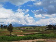 Agricultural field in Sacred Valley, Cusco Royalty Free Stock Photos