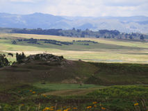 Agricultural field in Sacred Valley, Cusco Royalty Free Stock Images