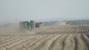 On an agricultural field technique works on harvest. stock footage