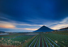 An agricultural field at twilight. A cultivated field in the foreground and a single mountain in the background. A dark moody sky created as clouds moved during stock photo