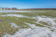 Agricultural field under the snow. Stock Images