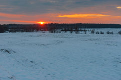 Agricultural field at winter season in Sumskaya oblast, Ukraine. Sunset over agricultural field at winter season in Sumskaya oblast, Ukraine Royalty Free Stock Photos