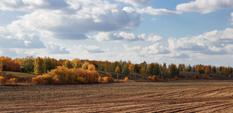 Agricultural fields and arable. In Europe Royalty Free Stock Photos