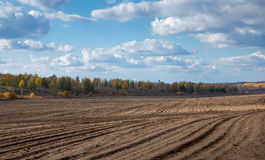 Agricultural fields and arable Royalty Free Stock Photos