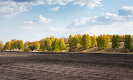 Agricultural fields and arable. In Europe Stock Photo