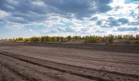 Agricultural fields and arable. In Europe Royalty Free Stock Image