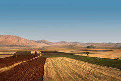 Agricultural fields in autumn in a valley of the mountains Stock Image