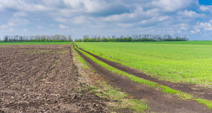 Agricultural fields and country road in central Ukraine cloudy  spring day Stock Photos