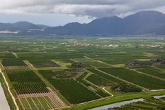 Agricultural fields of Dalmatia Stock Image